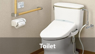 Toilet Pollutants